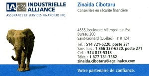 Carte affaires_Zinaida Cibotaru