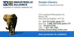 Carte affaires_Zinaida Cibotaru